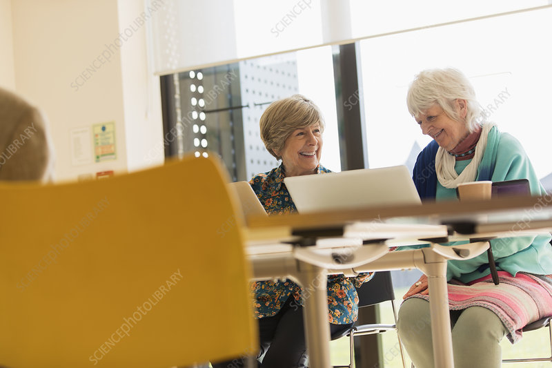 Senior businesswomen using laptops