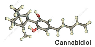 Cannabidiol, molecular model