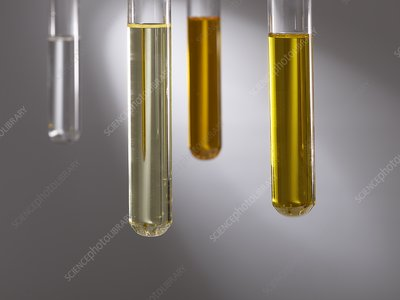 Cooking oils in test tubes
