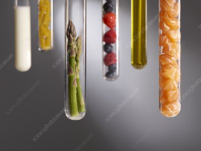Food groups in test tubes