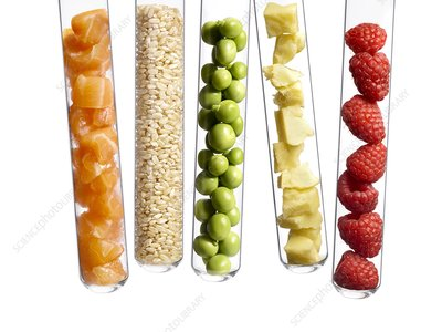 Foods in test tubes