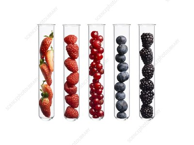 Berries in test tubes