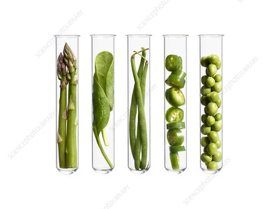 Vegetables in test tubes