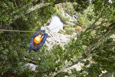 Woman zip lining among trees in woods
