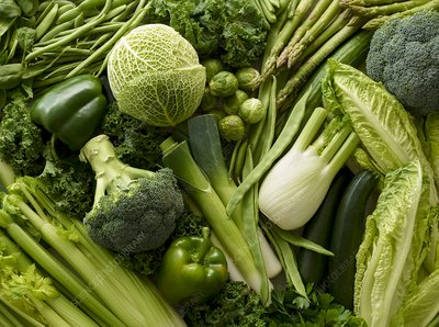 Variety of fresh green vegetables