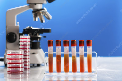 Pathology lab, conceptual image