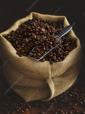 Sack full of coffee beans