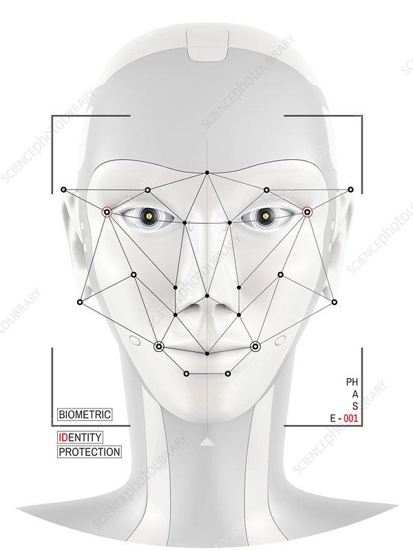 Facial identification, conceptual illustration