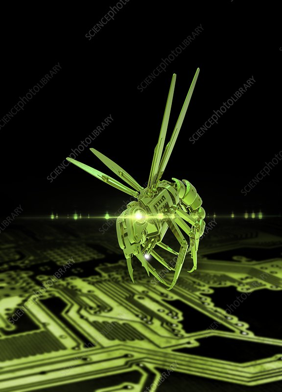 Robotic insect and circuit board, illustration