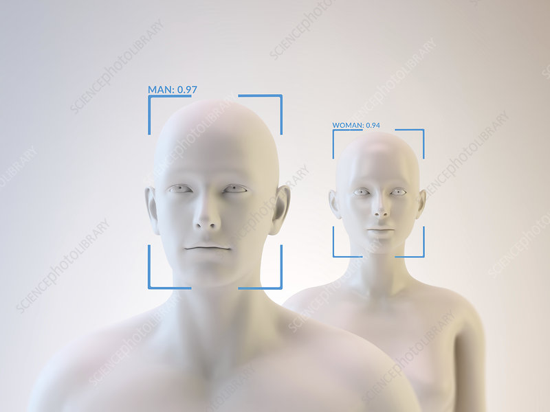 Androids and facial recognition, illustration