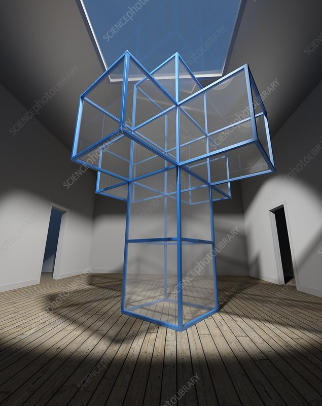 Net of a tesseract, illustration