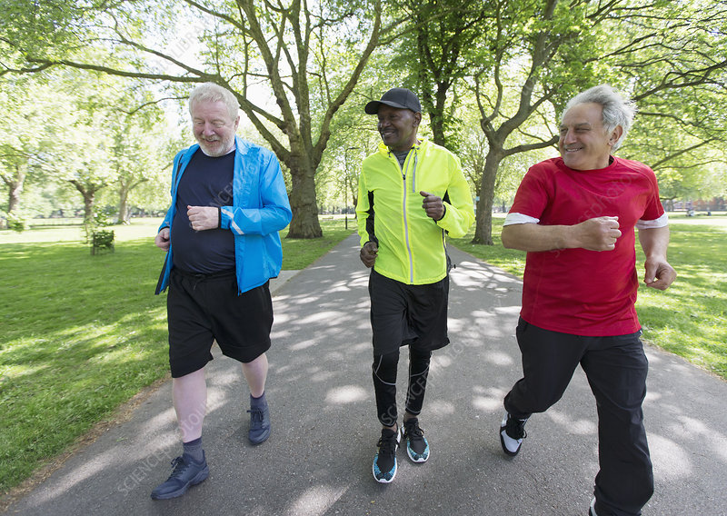 Active senior men friends power walking in park