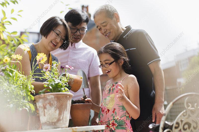 Family gardening, potting flowers
