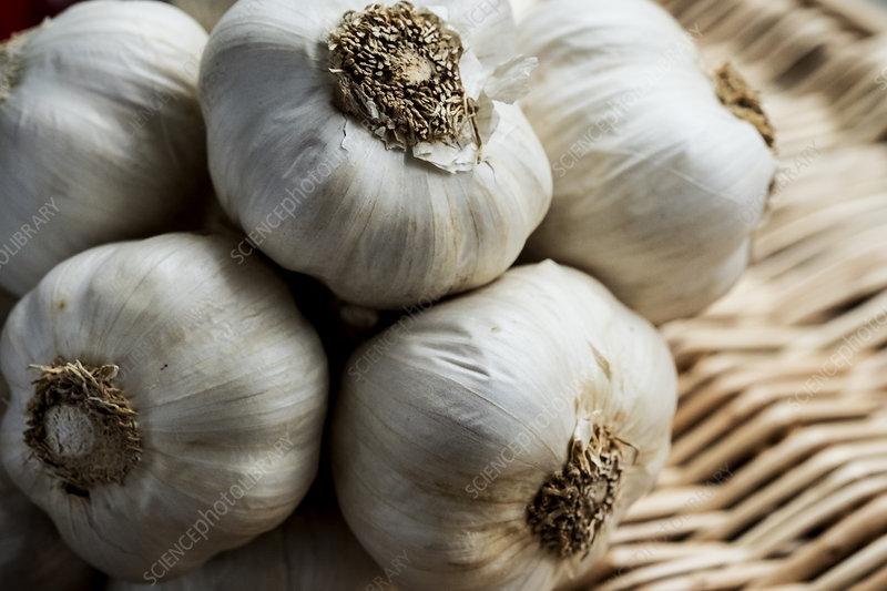 A few garlic bulbs in a basket