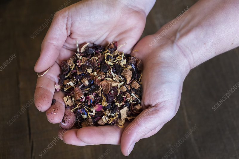 Person holding small heap of red berry herbal tea infusion