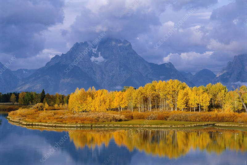 Mt Moran and Snake river at oxbow bend