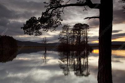 Sunset over Loch Mallachie, Scotland, UK