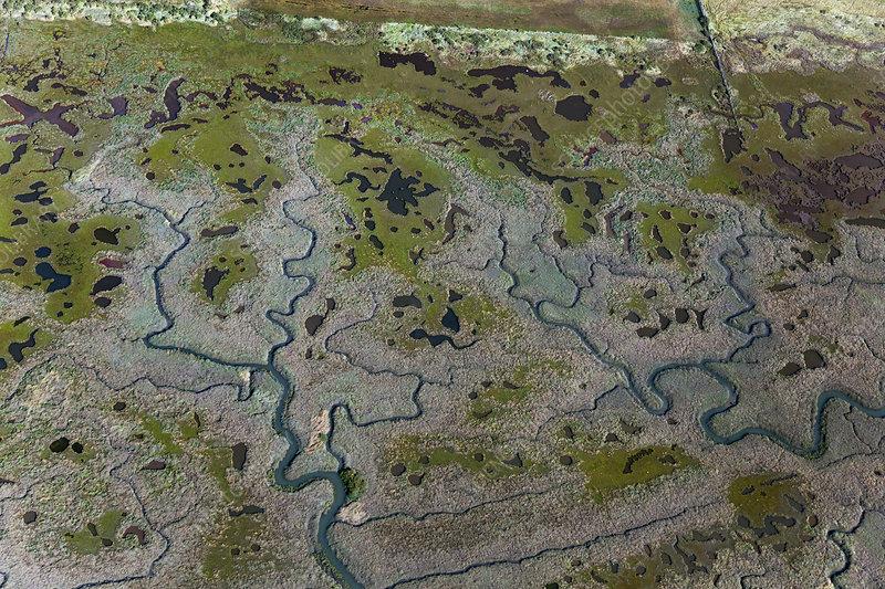 Aerial view of saltmarshes, Burnham Overy, Norfolk, UK