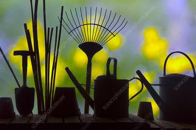 Gardening tools silhouettes against garden flowers