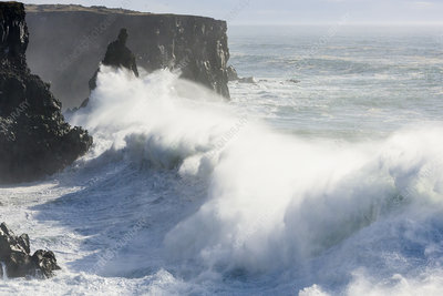 Storm waves breaking against cliffs at Svortuloft, Iceland