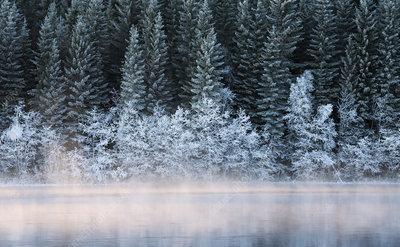 Cold winterday at Nidelva river, Klaebu, Norway