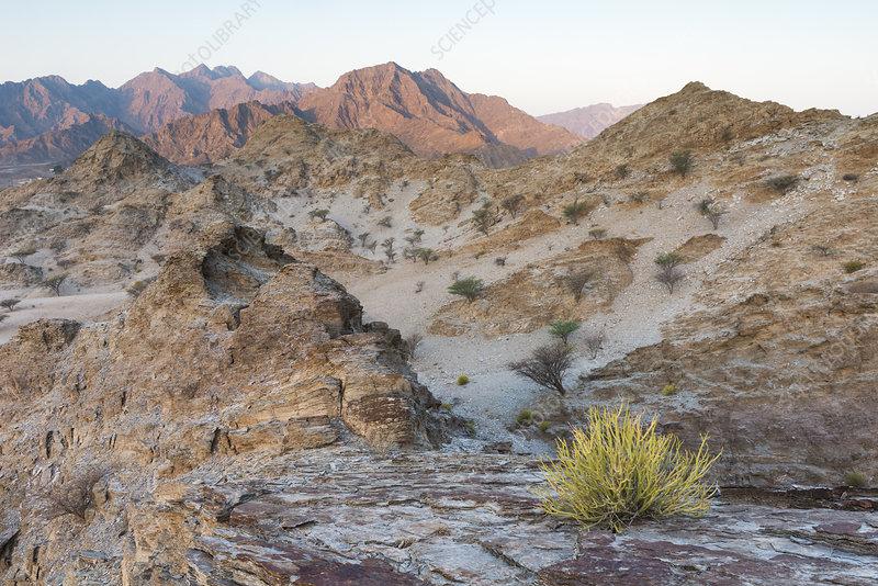 Sedimentary rocks in the Hajar Mountains, UAE