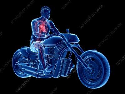Illustration of a biker's heart