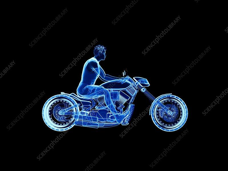 Illustration of a biker