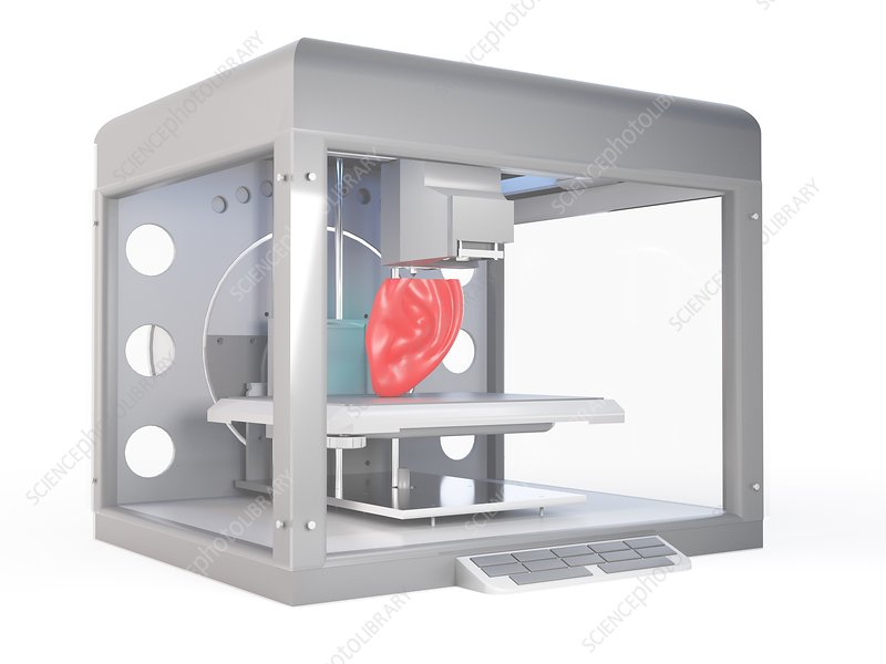 Illustration of a 3d printer printing an ear