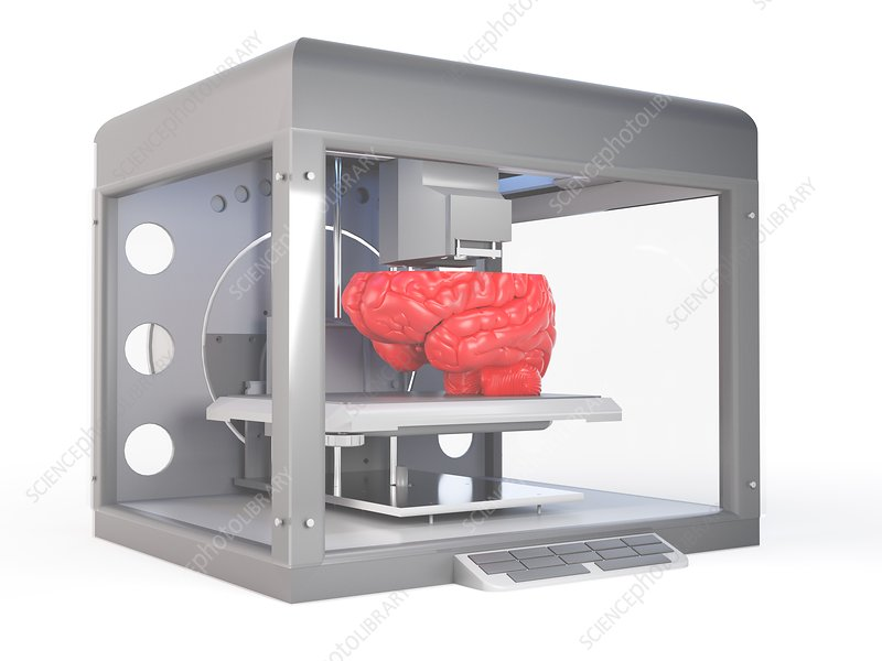 Illustration of a 3d printer printing a brain