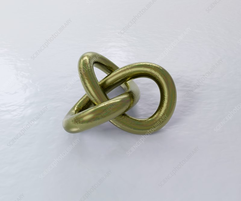 Trefoil knot, illustration