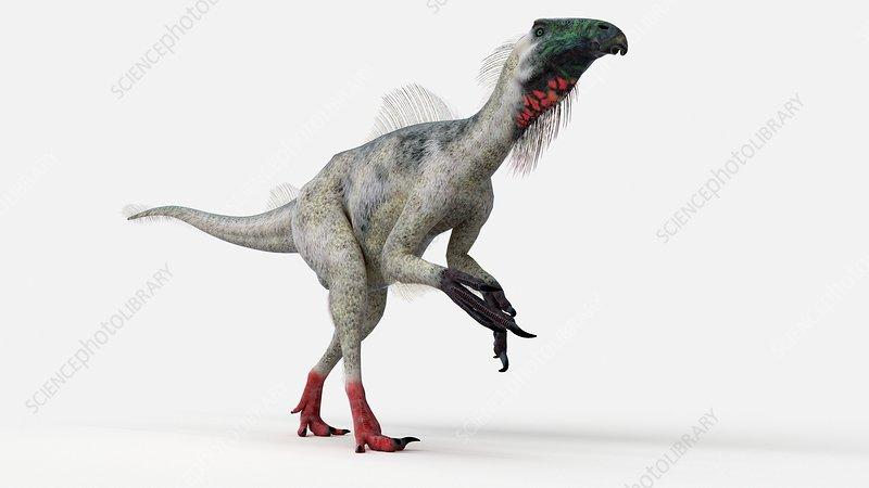 Illustration of a beipiaosaurus