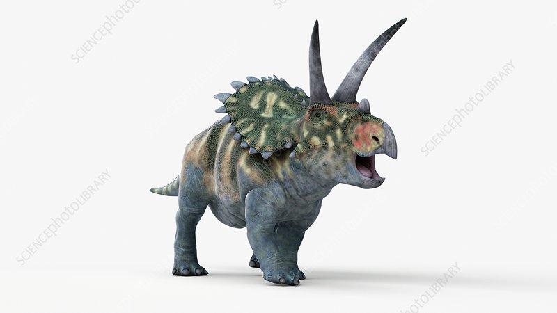 Illustration of a coahuilaceratops