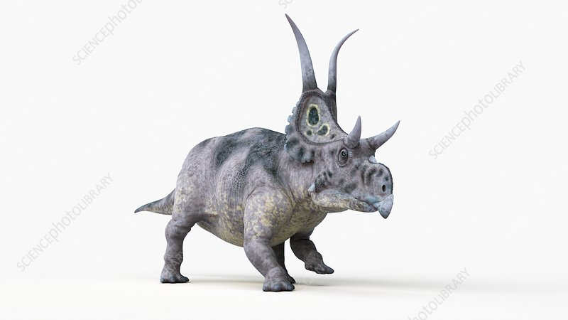Illustration of a diabloceratops