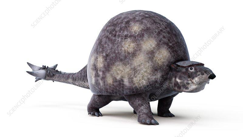 Illustration of a doedicurus