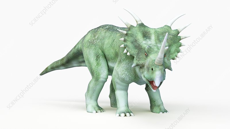 Illustration of a styracosaurus