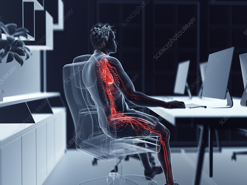 Illustration of an office worker's vascular system