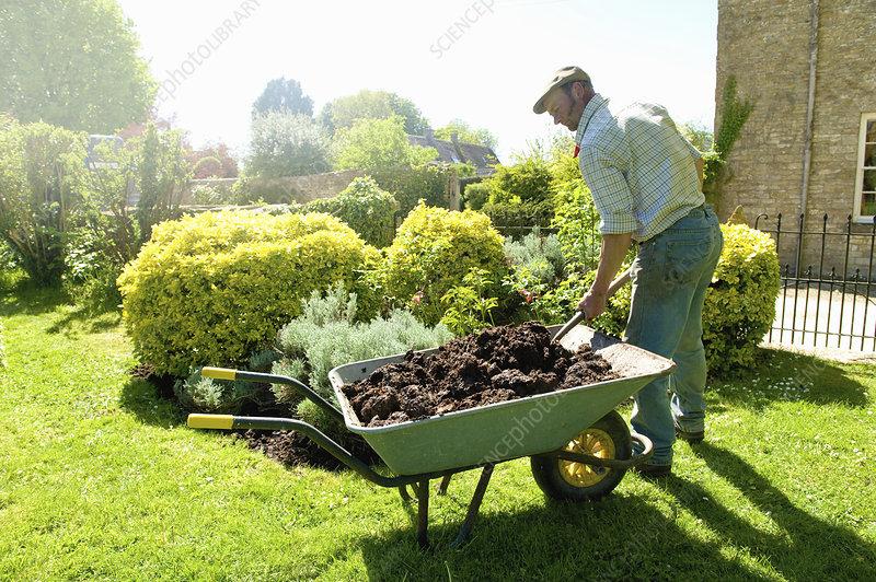 A man gardening adding mulch and fertiliser to soil