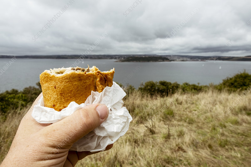 A hand holding a half eaten Cornish pasty