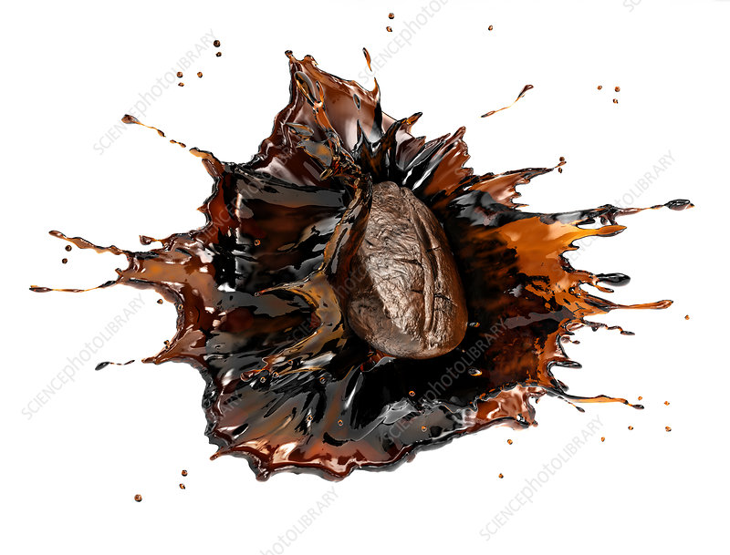 Coffee bean splashing in liquid coffee, illustration