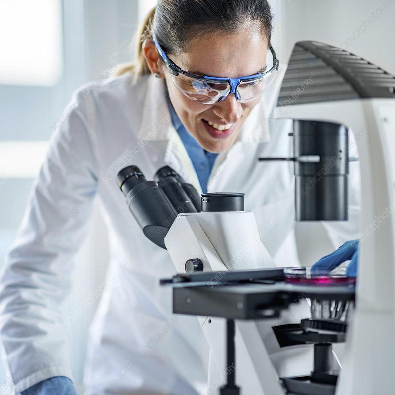 Scientist using light microscope