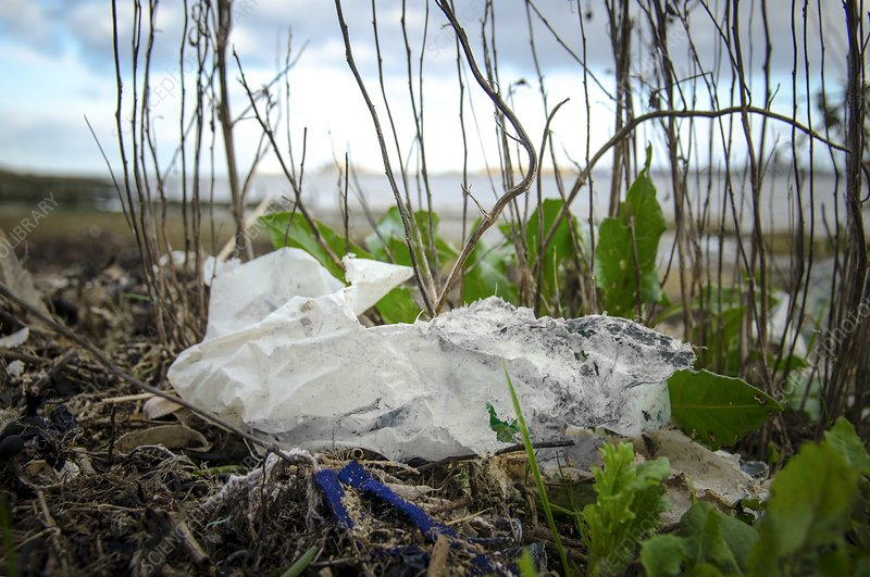 Washed up plastic on shore
