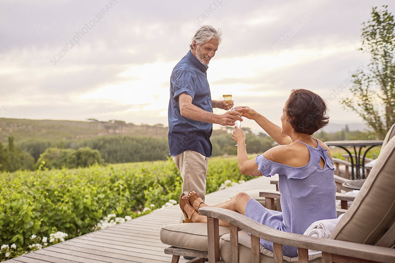 Mature couple drinking champagne on deck