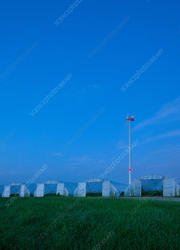Greenhouses and spinning wind turbine at night, Belgium