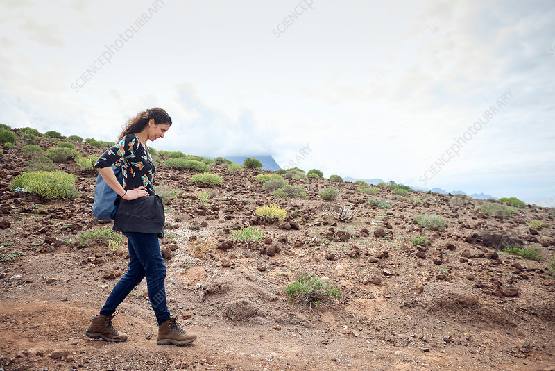 Woman hiking on dirt track in arid landscape