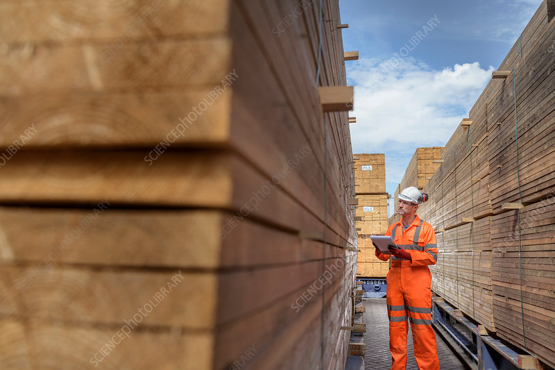 Worker with stacks of timber in storage at port