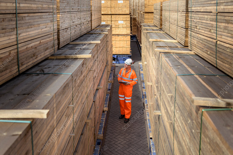 Worker among stacks of timber in storage at port