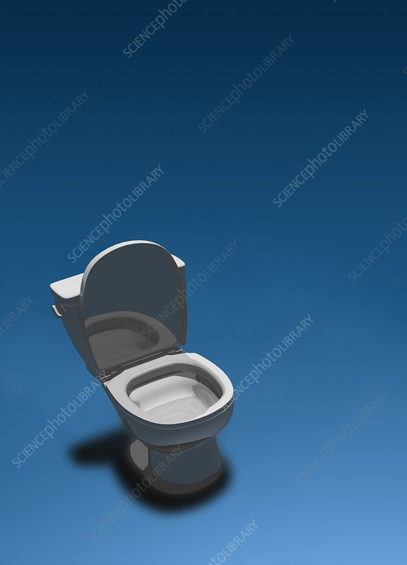 Open toilet, illustration