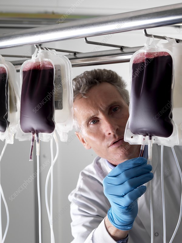 Donor blood processing