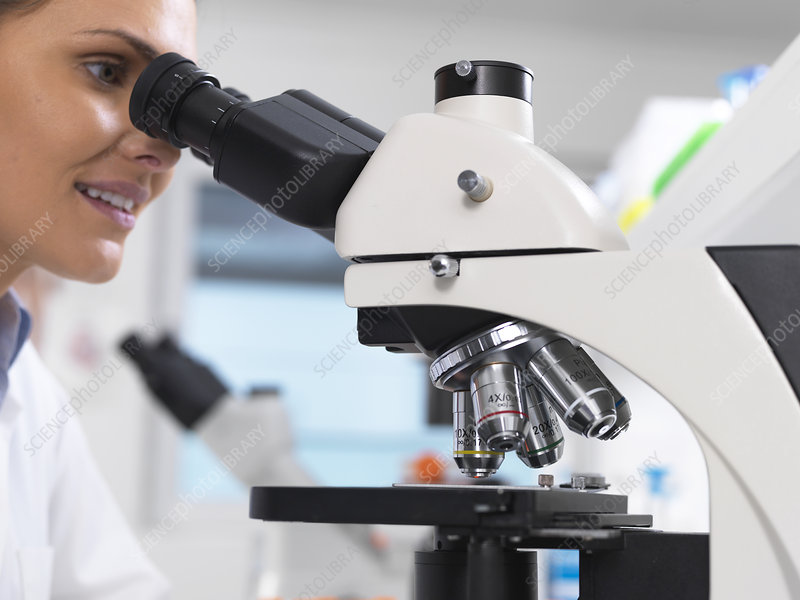 Medical screening laboratory